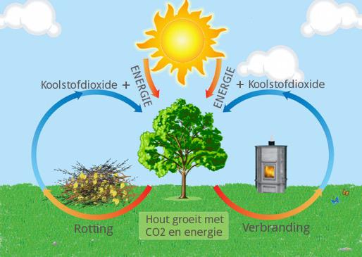 CO2 cyclus